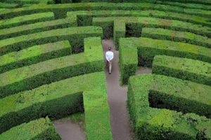 Labyrinth of Hedges