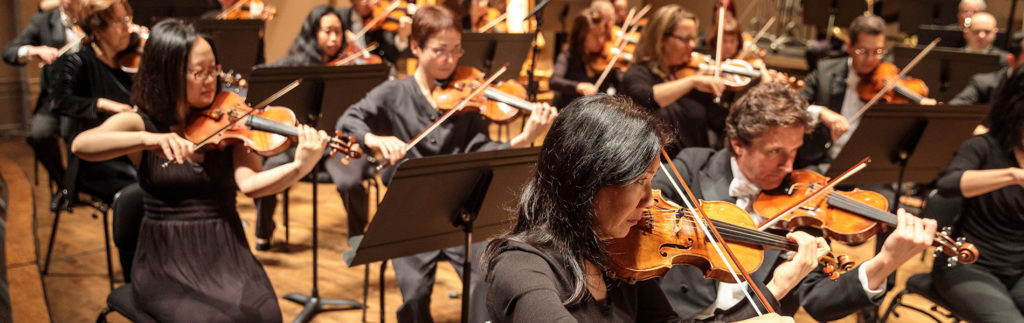 Violin Section of the Orchestra